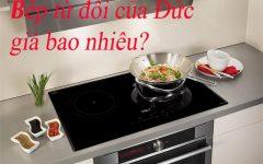 Giá Bếp Từ đôi Của đức