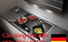 Bếp điện Nhập Khẩu Từ Đức