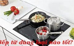 Nên Chọn Sử Dụng Bếp Từ Của Hãng Nào?