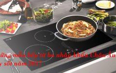 3 Mẫu Bếp Từ 3 Bếp Nhập Khẩu Châu Âu Gây Sốt Năm 2017